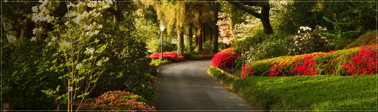 Far Niente Napa Valley Winery Gardens