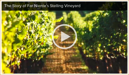 Far Niente Napa Valley Vineyards Video