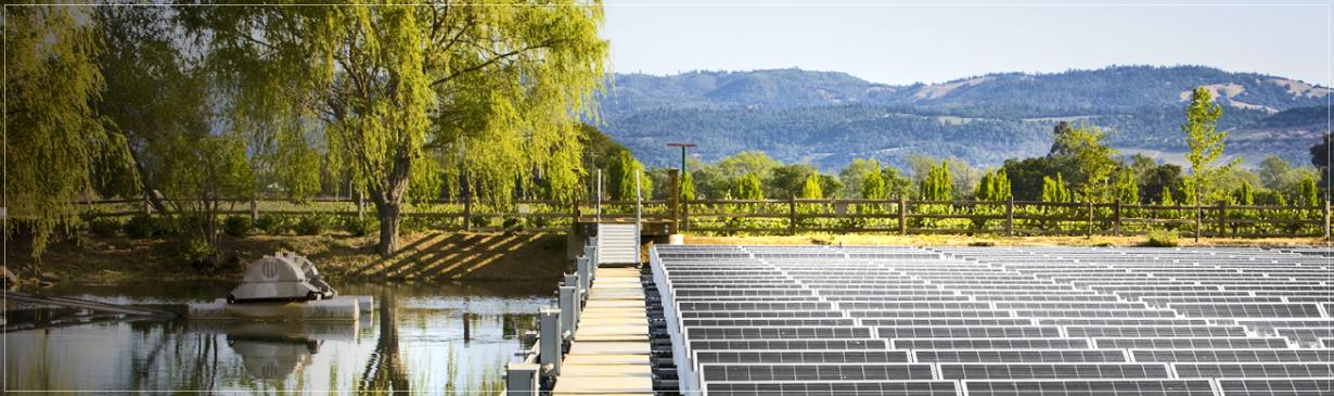 Far Niente Sustainable Napa Valley Wines