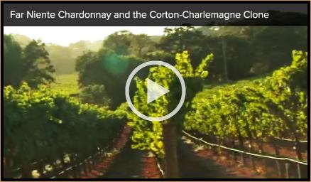 Napa Valley Chardonnay Video