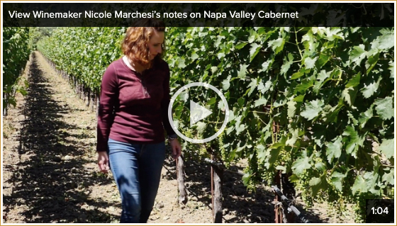 View Winemaker Nicole Marchesi's notes on Napa Valley Cabernet